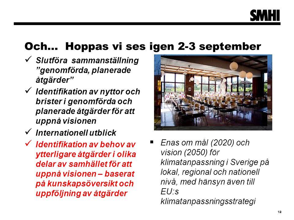 Och… Hoppas vi ses igen 2-3 september Slutföra sammanställning genomförda, planerade åtgärder Identifikation av nyttor och brister i genomförda och planerade åtgärder för att uppnå visionen Internationell utblick Identifikation av behov av ytterligare åtgärder i olika delar av samhället för att uppnå visionen – baserat på kunskapsöversikt och uppföljning av åtgärder  Enas om mål (2020) och vision (2050) för klimatanpassning i Sverige på lokal, regional och nationell nivå, med hänsyn även till EU:s klimatanpassningsstrategi 12