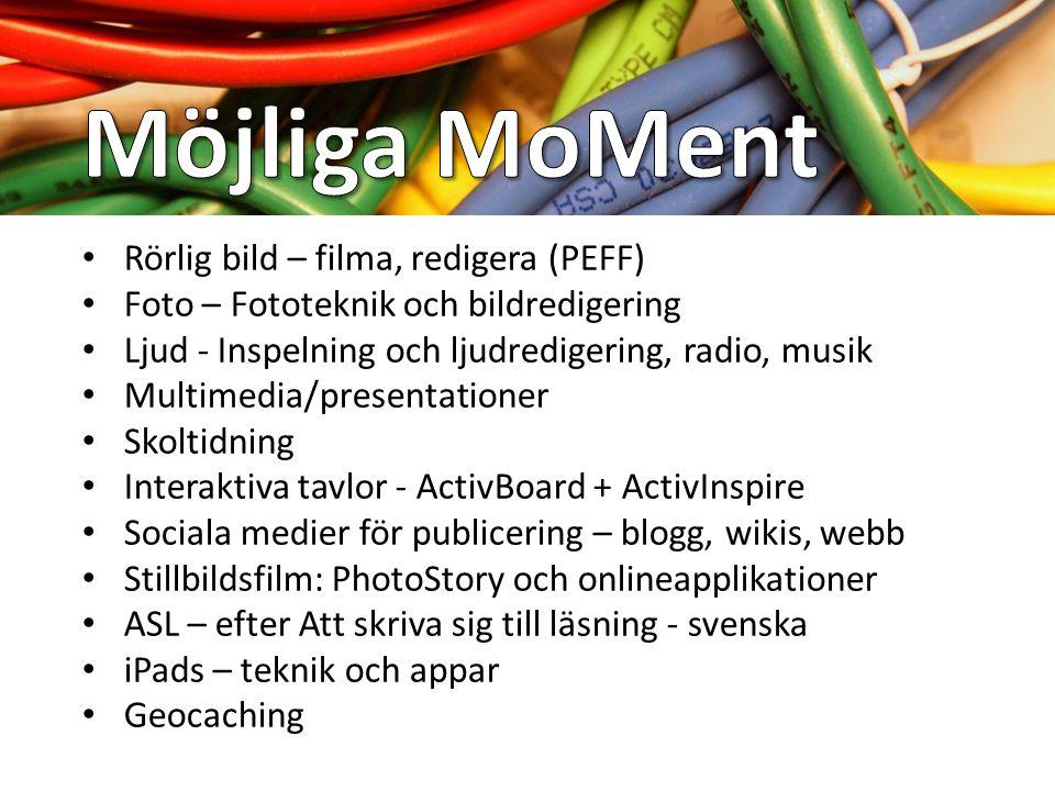 Måluppfyllelse Motivation Metodik Mångfald Multimedia Multimodalitet Modern teknik Mail Mobiltelefoni Mediekunskap Miljö, hållbar utveckling Massmedia
