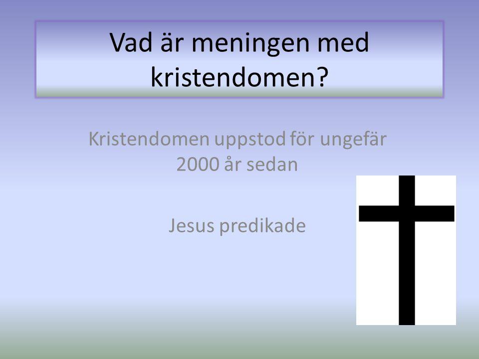 Vad är meningen med kristendomen? Kristendomen uppstod för ungefär 2000 år sedan Jesus predikade