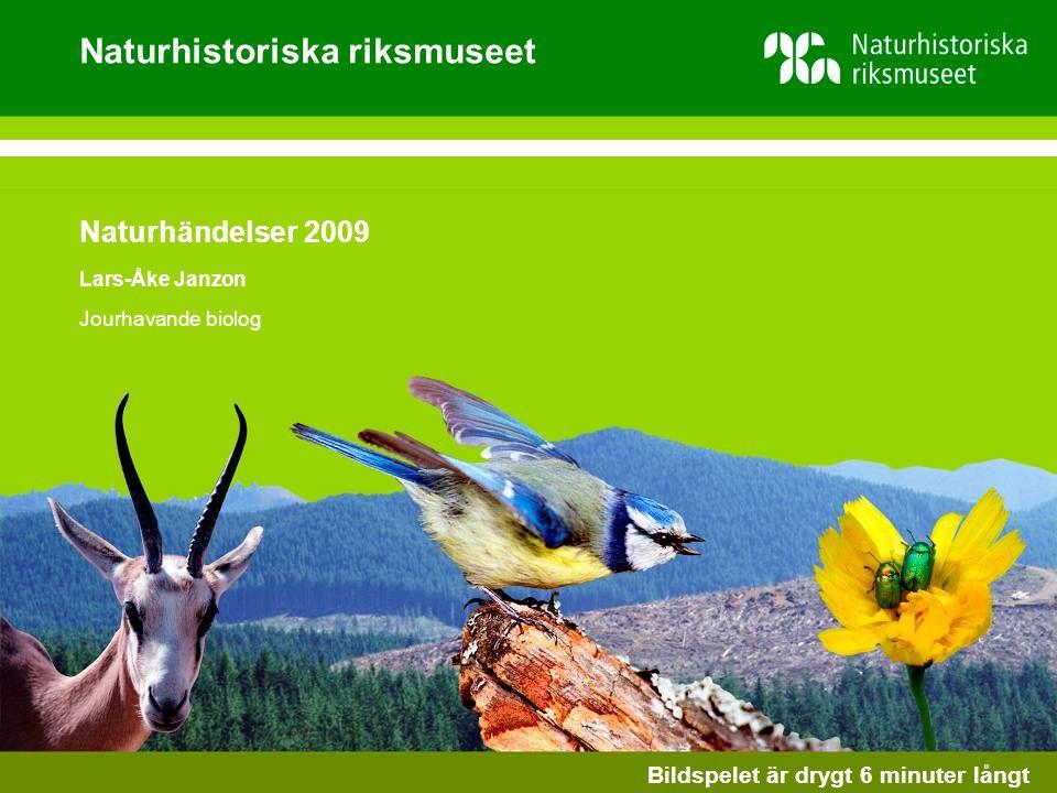 Naturhistoriska riksmuseet Naturhändelser 2009 Lars-Åke Janzon Jourhavande biolog Bildspelet är drygt 6 minuter långt