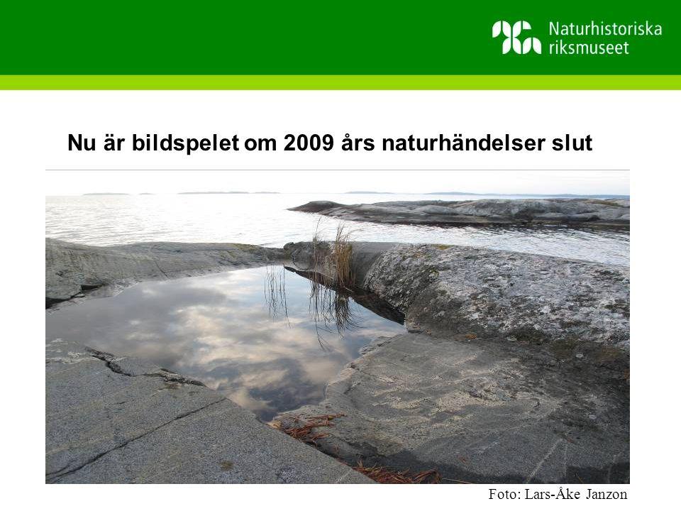 Nu är bildspelet om 2009 års naturhändelser slut Foto: Lars-Åke Janzon