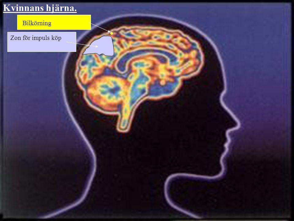 Zon för impuls köp Bilkörning Kvinnans hjärna.