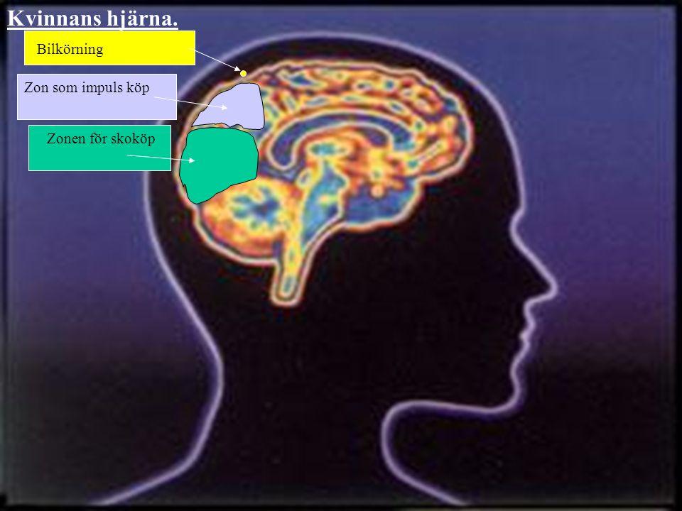 Zonen för skoköp Zon som impuls köp Bilkörning Kvinnans hjärna.