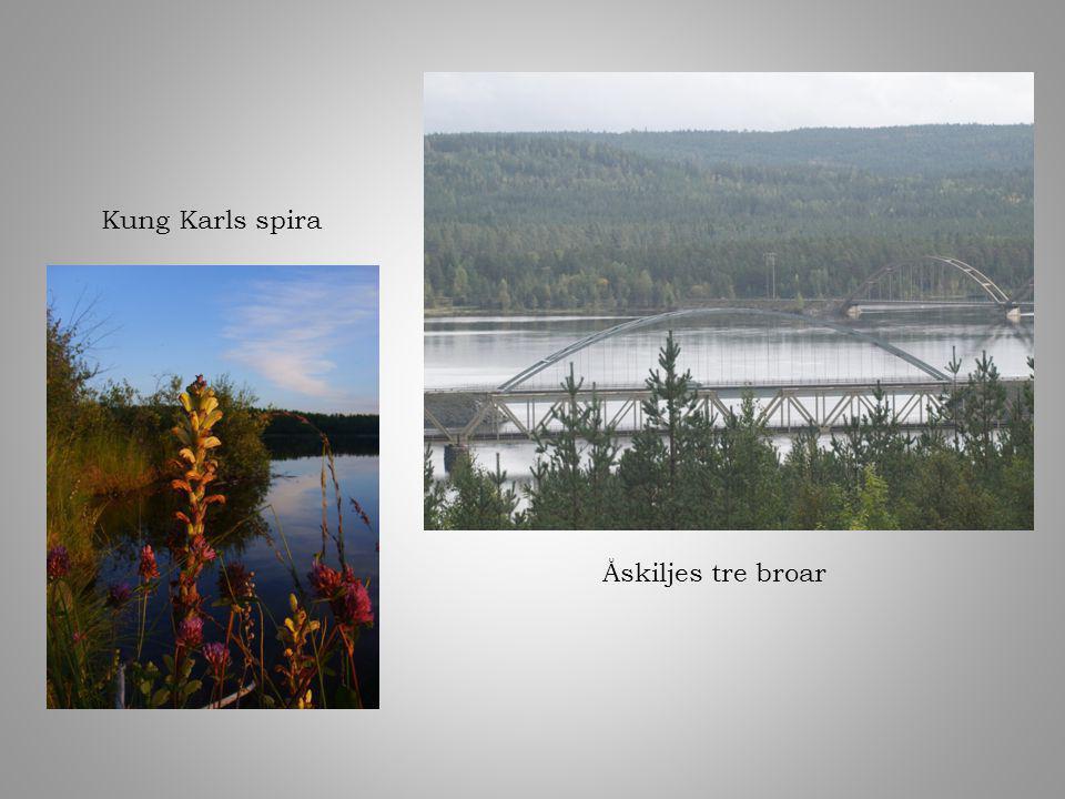 Åskiljes tre broar Kung Karls spira