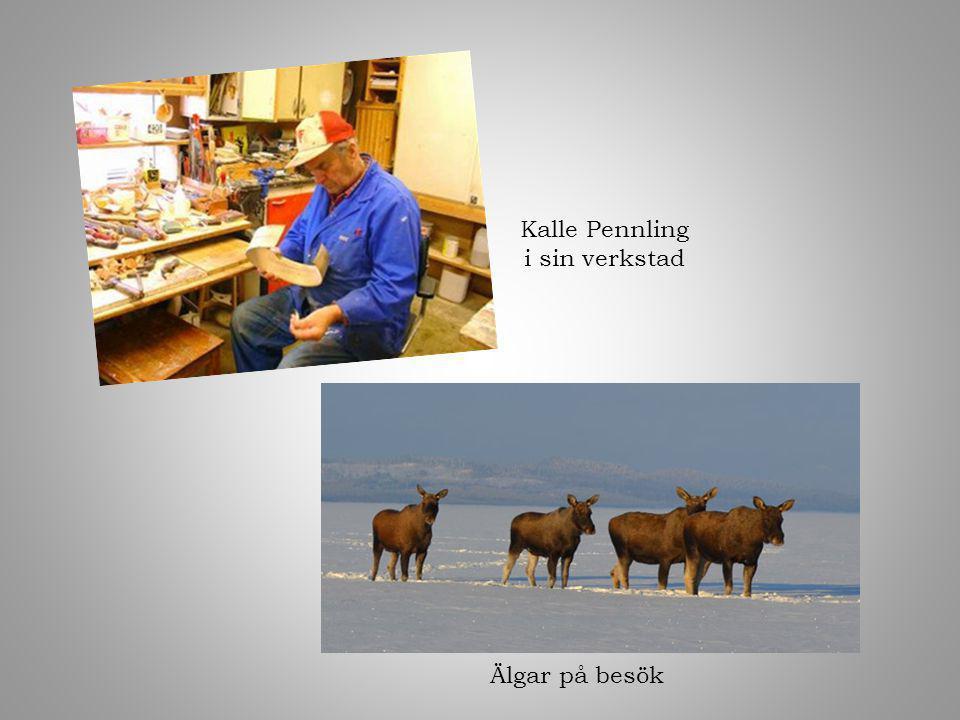Kalle Pennling i sin verkstad Älgar på besök