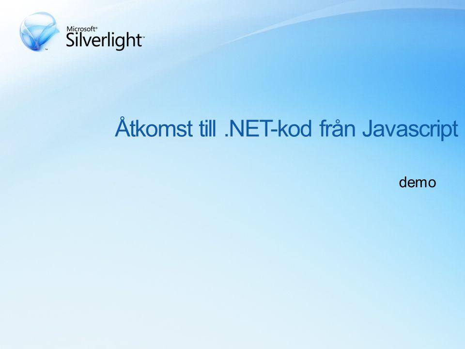 Åtkomst till.NET-kod från Javascript demo