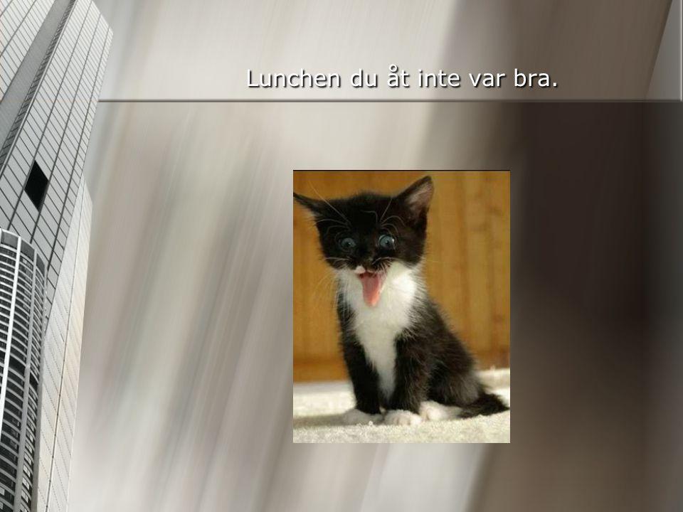 Lunchen du åt inte var bra.