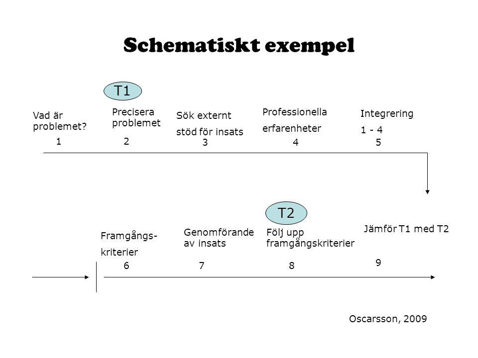 Schematiskt exempel Vad är problemet? 12 345 Framgångs- kriterier Sök externt stöd för insats Professionella erfarenheter Integrering 1 - 4 678 9 Prec