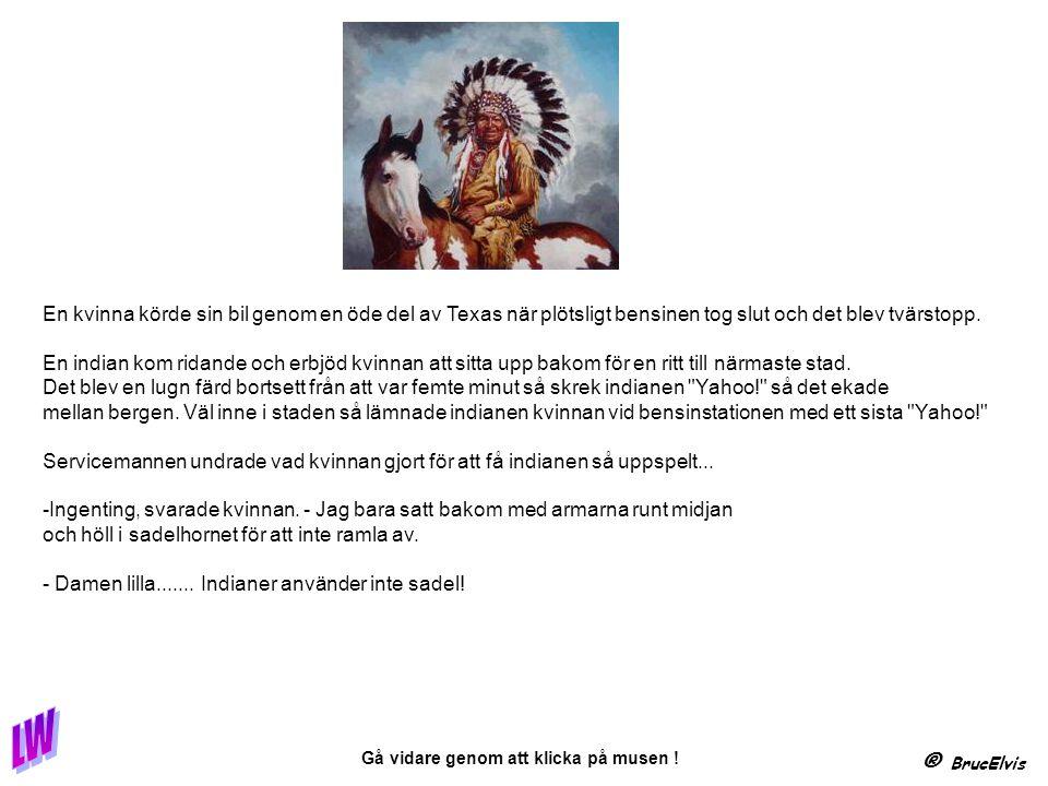 ® BrucElvis Gå vidare genom att klicka på musen ! enligt