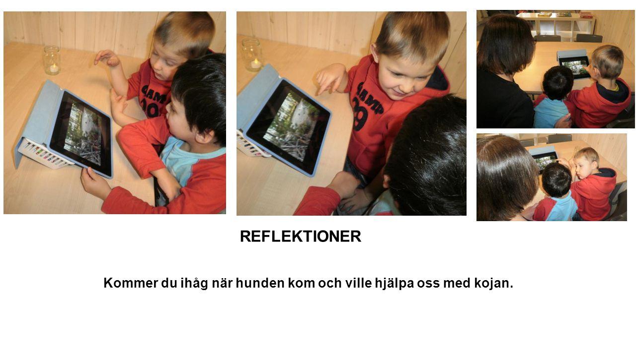 REFLEKTIONER Föräldrar – Barn – Pedagoger Min storasyster kan läsa för mig och min pappa.