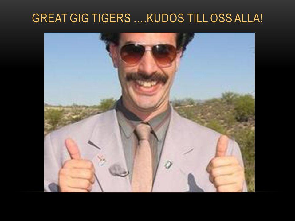 GREAT GIG TIGERS ….KUDOS TILL OSS ALLA!