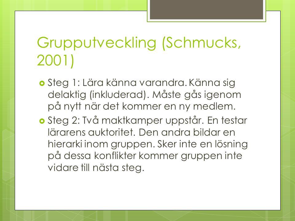 Grupputveckling (Schmucks, 2001)  Steg 1: Lära känna varandra. Känna sig delaktig (inkluderad). Måste gås igenom på nytt när det kommer en ny medlem.