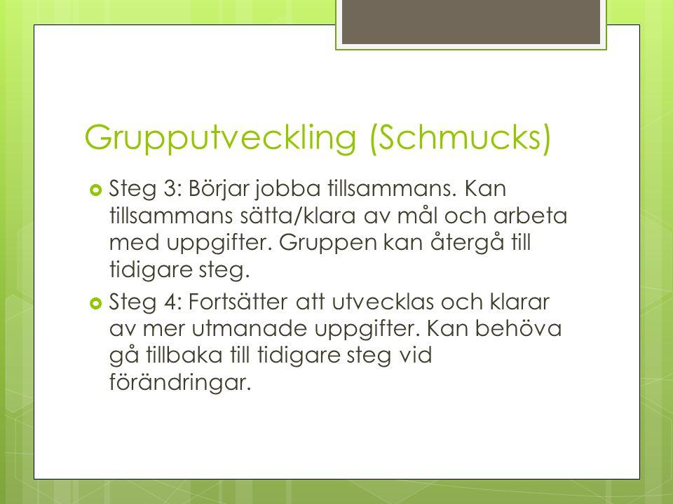 Grupputveckling (Schmucks)  Steg 3: Börjar jobba tillsammans. Kan tillsammans sätta/klara av mål och arbeta med uppgifter. Gruppen kan återgå till ti