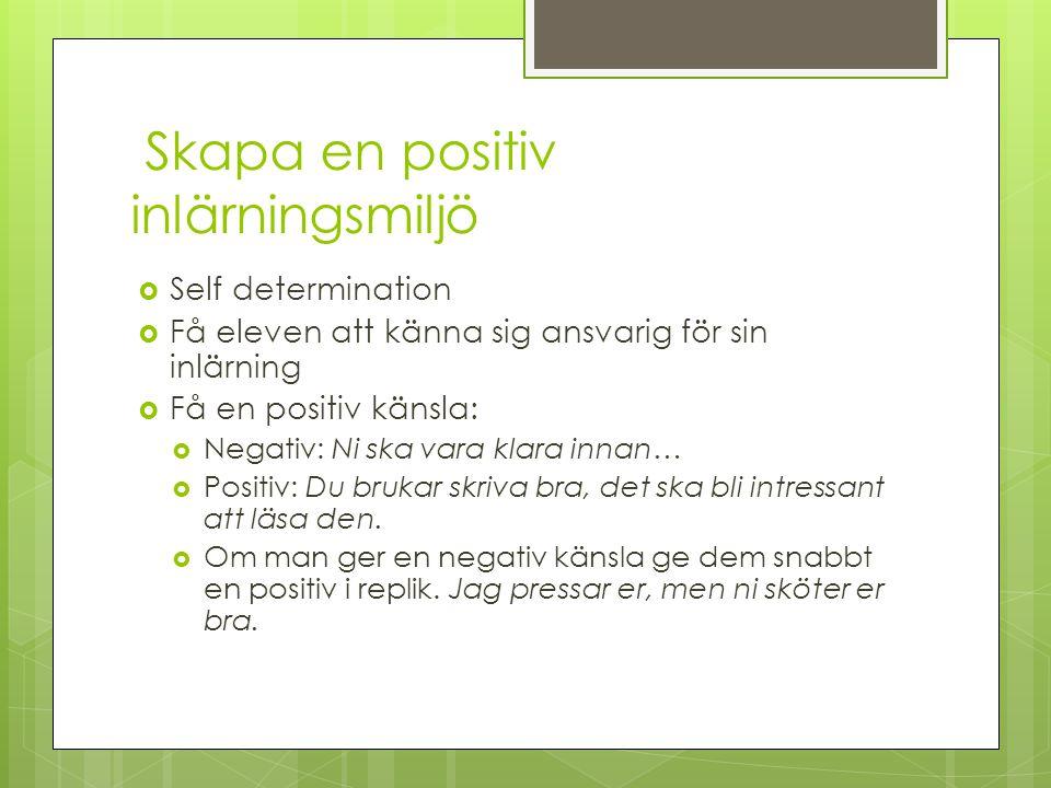 Skapa en positiv inlärningsmiljö  Self determination  Få eleven att känna sig ansvarig för sin inlärning  Få en positiv känsla:  Negativ: Ni ska v