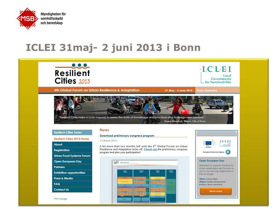 ICLEI 31maj- 2 juni 2013 i Bonn