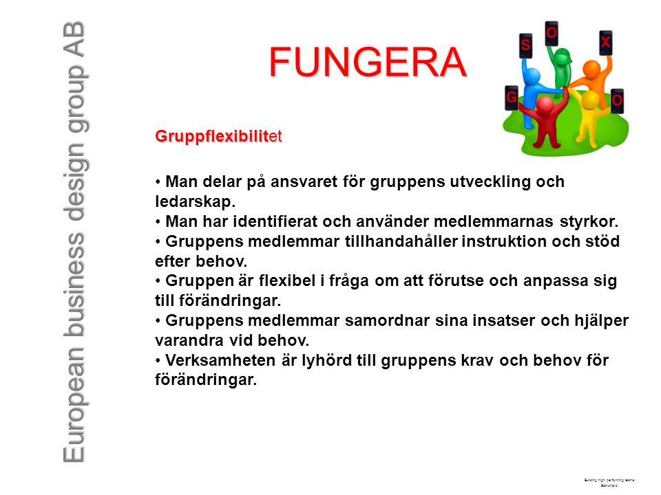 European business design group AB FUNGERA Gruppflexibilitet Man delar på ansvaret för gruppens utveckling och ledarskap. Man har identifierat och anvä