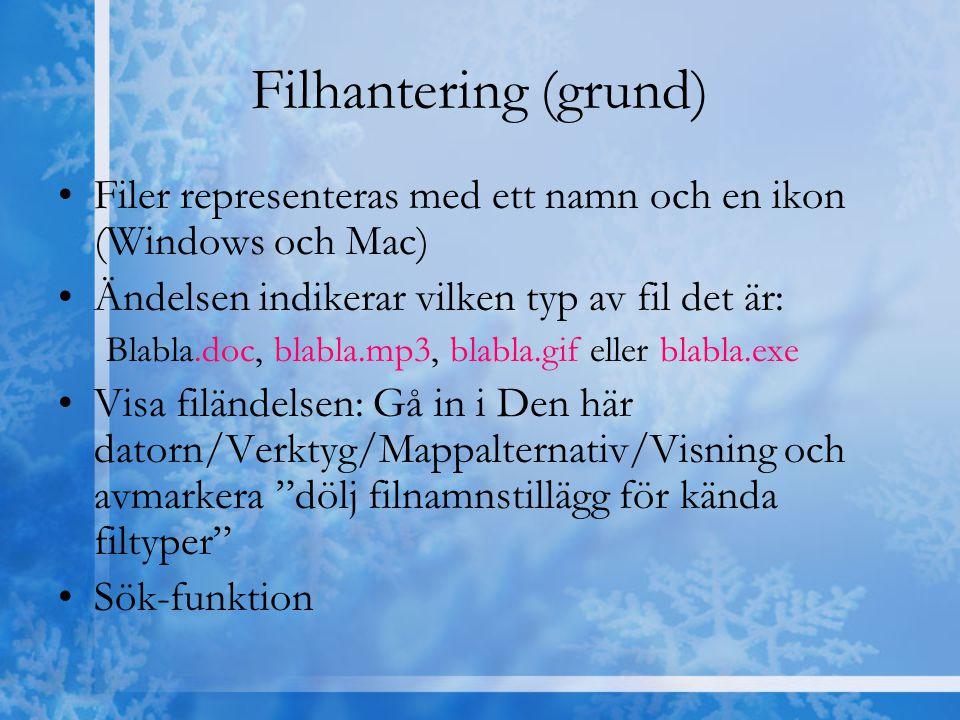 Filhantering (grund) Filer representeras med ett namn och en ikon (Windows och Mac) Ändelsen indikerar vilken typ av fil det är: Blabla.doc, blabla.mp