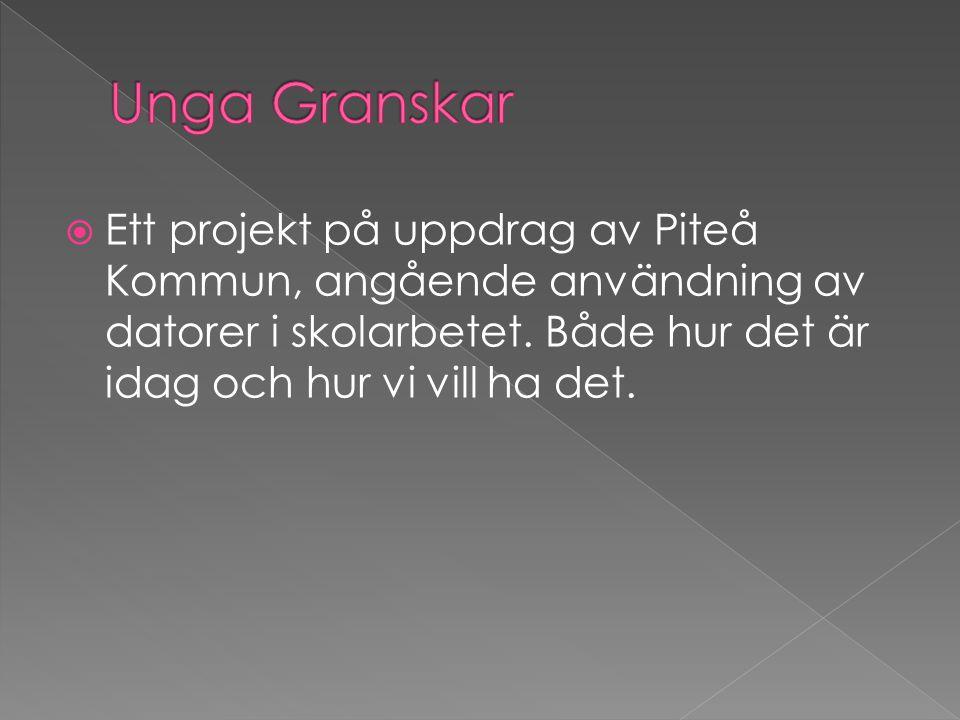  Ett projekt på uppdrag av Piteå Kommun, angående användning av datorer i skolarbetet. Både hur det är idag och hur vi vill ha det.