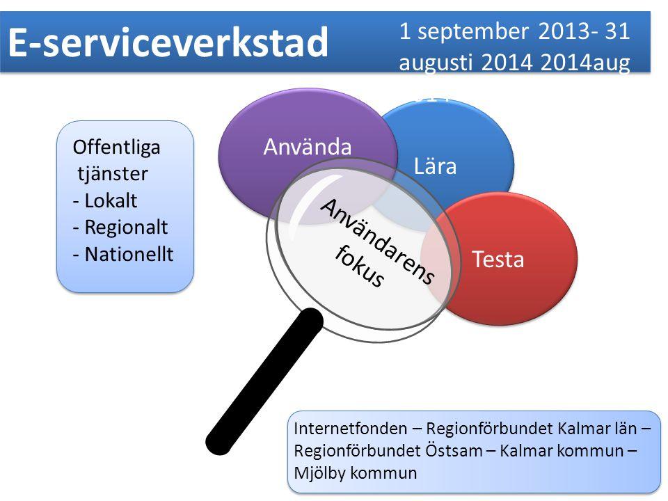 Lära Använda Testa E-serviceverkstad 1 september 2013- 31 augusti 2014 2014aug 2014 Offentliga tjänster - Lokalt - Regionalt - Nationellt Internetfond