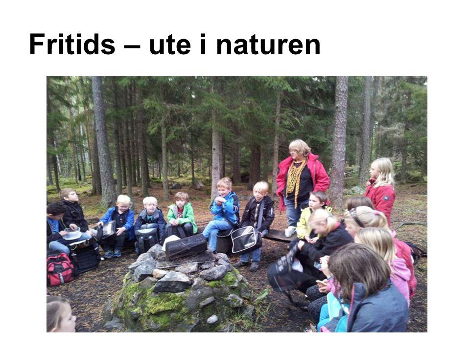 Hitta nya vägar Värdegrundsarbete i Hummelstaskolan läsåret 2012-2013