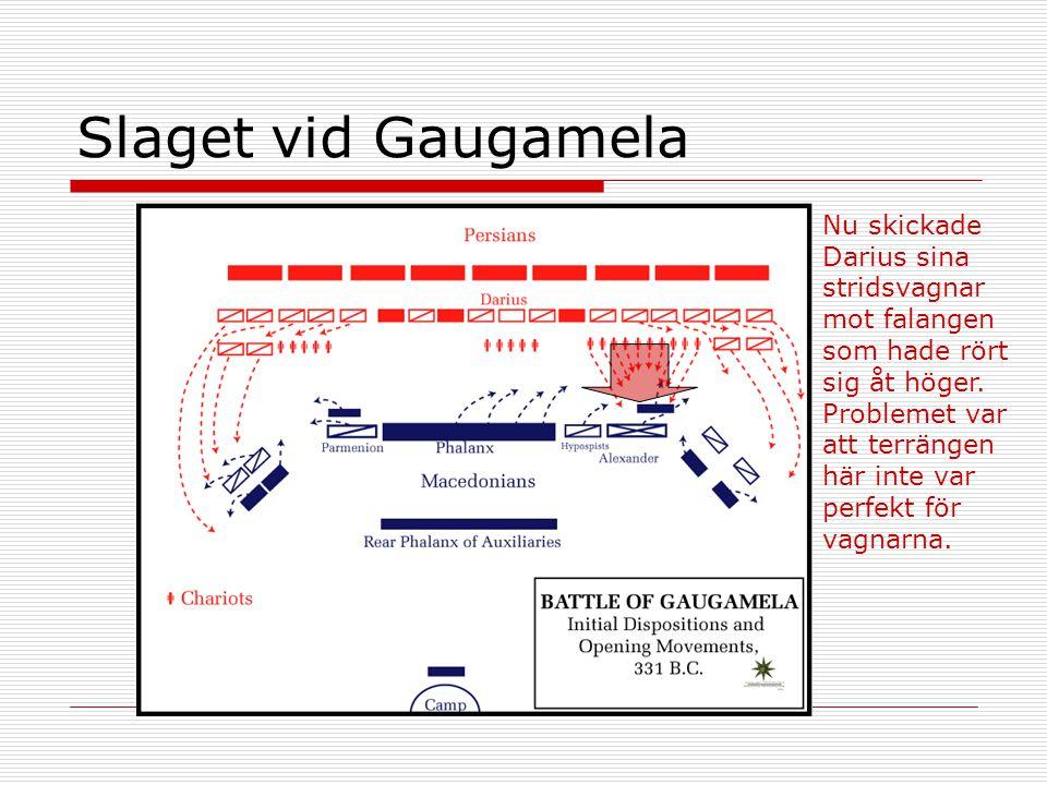 Slaget vid Gaugamela Nu skickade Darius sina stridsvagnar mot falangen som hade rört sig åt höger. Problemet var att terrängen här inte var perfekt fö
