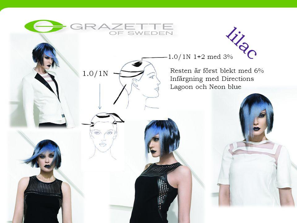 lilac 1.0/1N 1+2 med 3% 1.0/1N Resten är först blekt med 6% Infärgning med Directions Lagoon och Neon blue