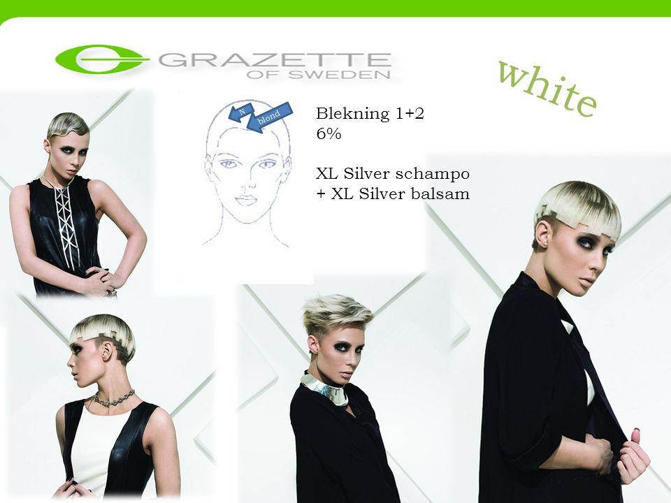 white Blekning 1+2 6% XL Silver schampo + XL Silver balsam blond N