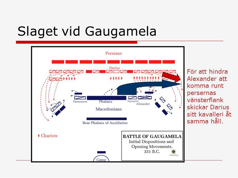 Slaget vid Gaugamela För att hindra Alexander att komma runt persernas vänsterflank skickar Darius sitt kavalleri åt samma håll.