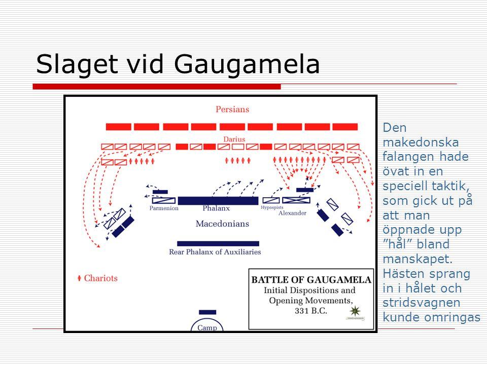 """Slaget vid Gaugamela Den makedonska falangen hade övat in en speciell taktik, som gick ut på att man öppnade upp """"hål"""" bland manskapet. Hästen sprang"""