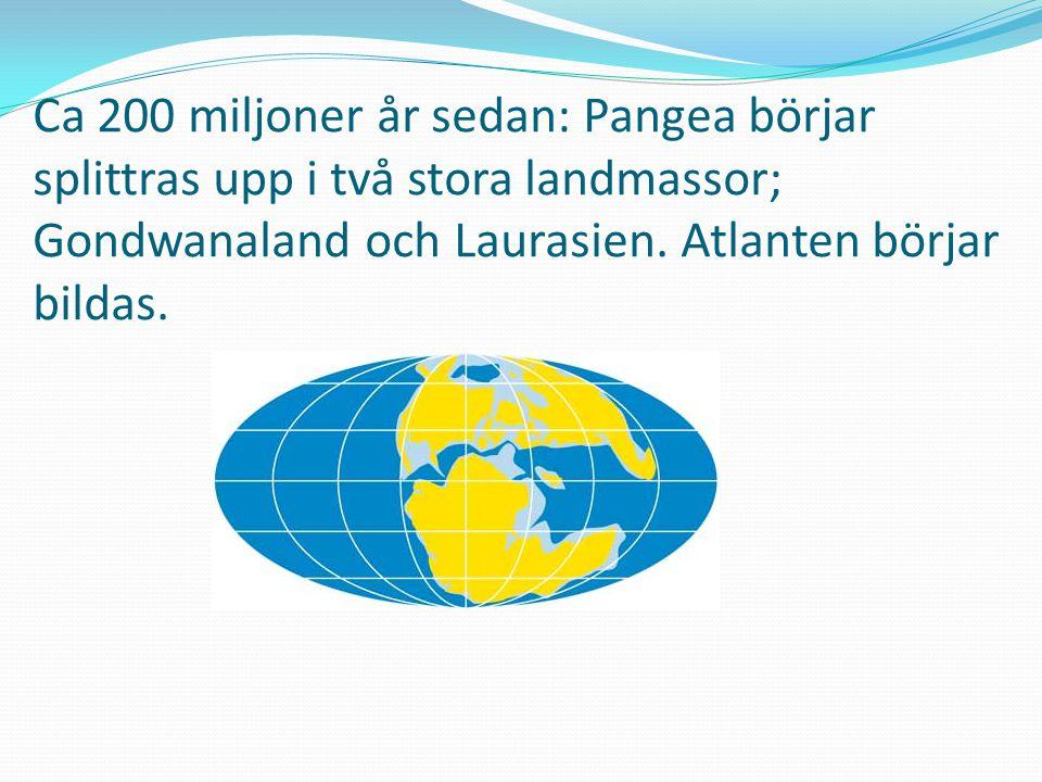 Ca 200 miljoner år sedan: Pangea börjar splittras upp i två stora landmassor; Gondwanaland och Laurasien. Atlanten börjar bildas.
