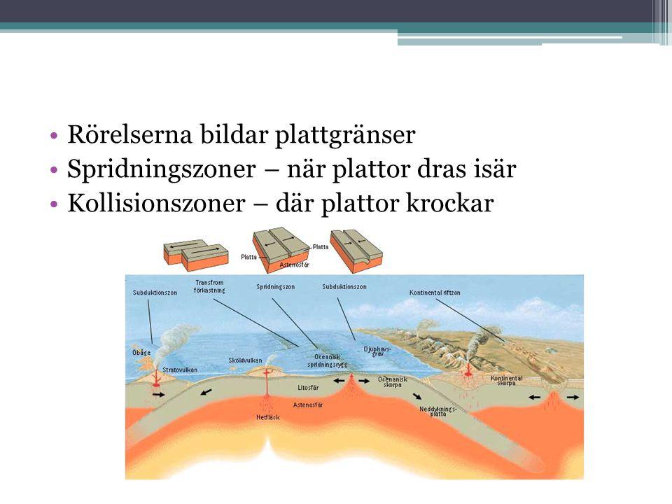 Rörelserna bildar plattgränser Spridningszoner – när plattor dras isär Kollisionszoner – där plattor krockar