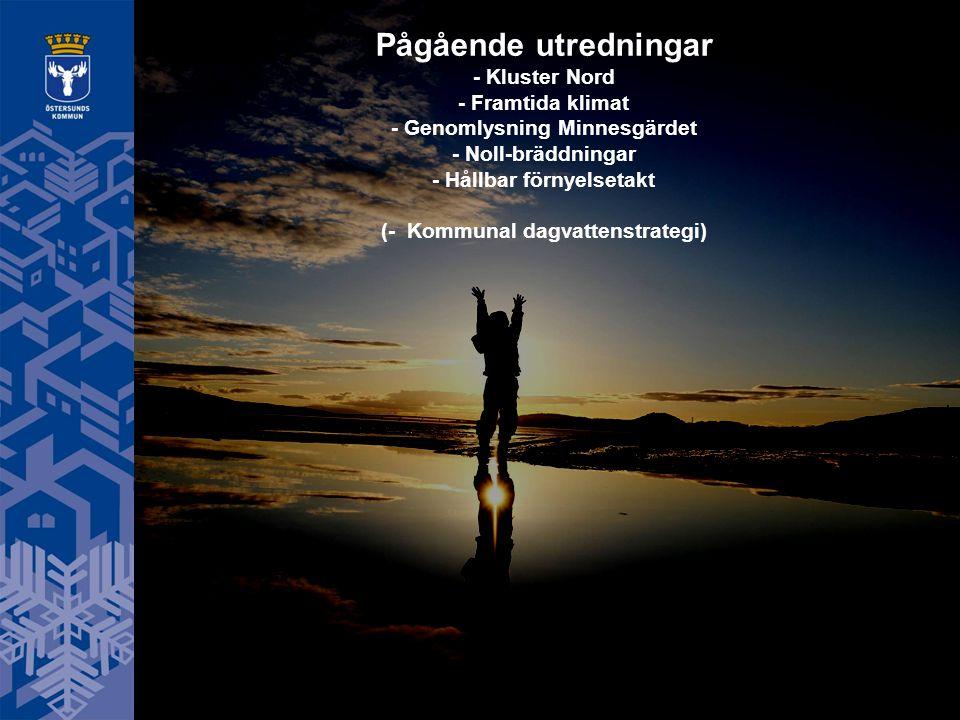 Pågående utredningar - Kluster Nord - Framtida klimat - Genomlysning Minnesgärdet - Noll-bräddningar - Hållbar förnyelsetakt (- Kommunal dagvattenstra