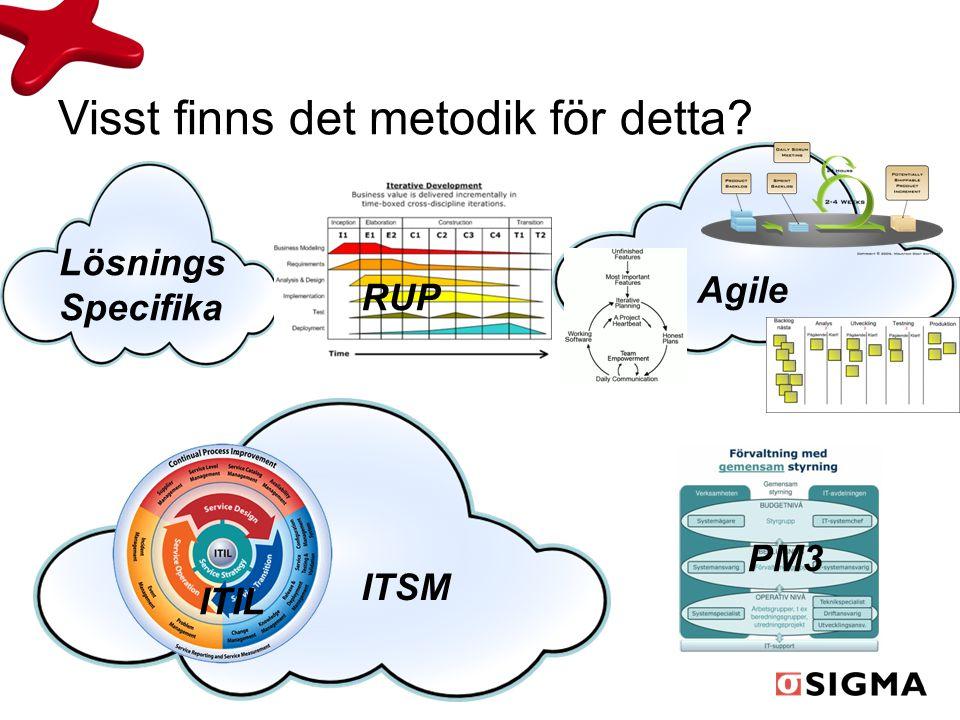 Visst finns det metodik för detta? PM3 ITIL ITSM Agile Lösnings Specifika RUP