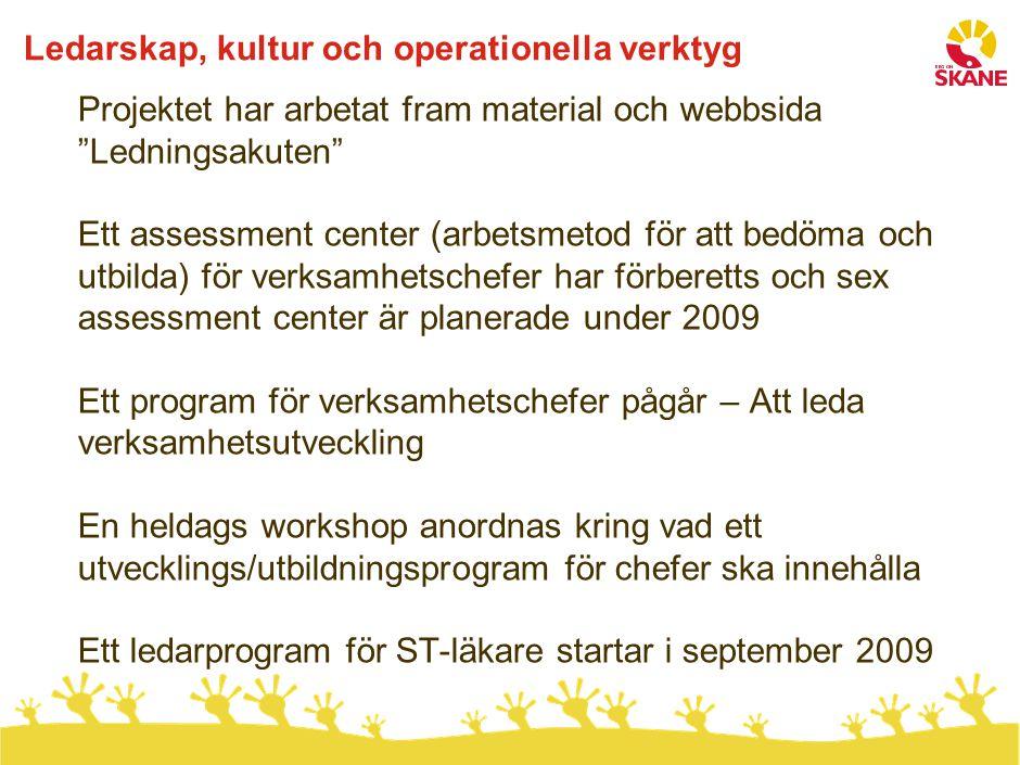 """Ledarskap, kultur och operationella verktyg Projektet har arbetat fram material och webbsida """"Ledningsakuten"""" Ett assessment center (arbetsmetod för a"""