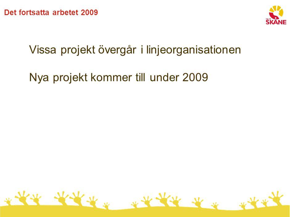 Det fortsatta arbetet 2009 Vissa projekt övergår i linjeorganisationen Nya projekt kommer till under 2009