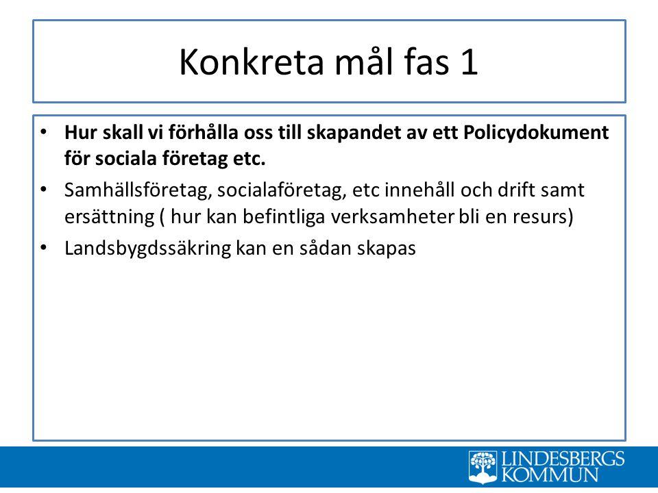 Konkreta mål fas 1 Hur skall vi förhålla oss till skapandet av ett Policydokument för sociala företag etc.