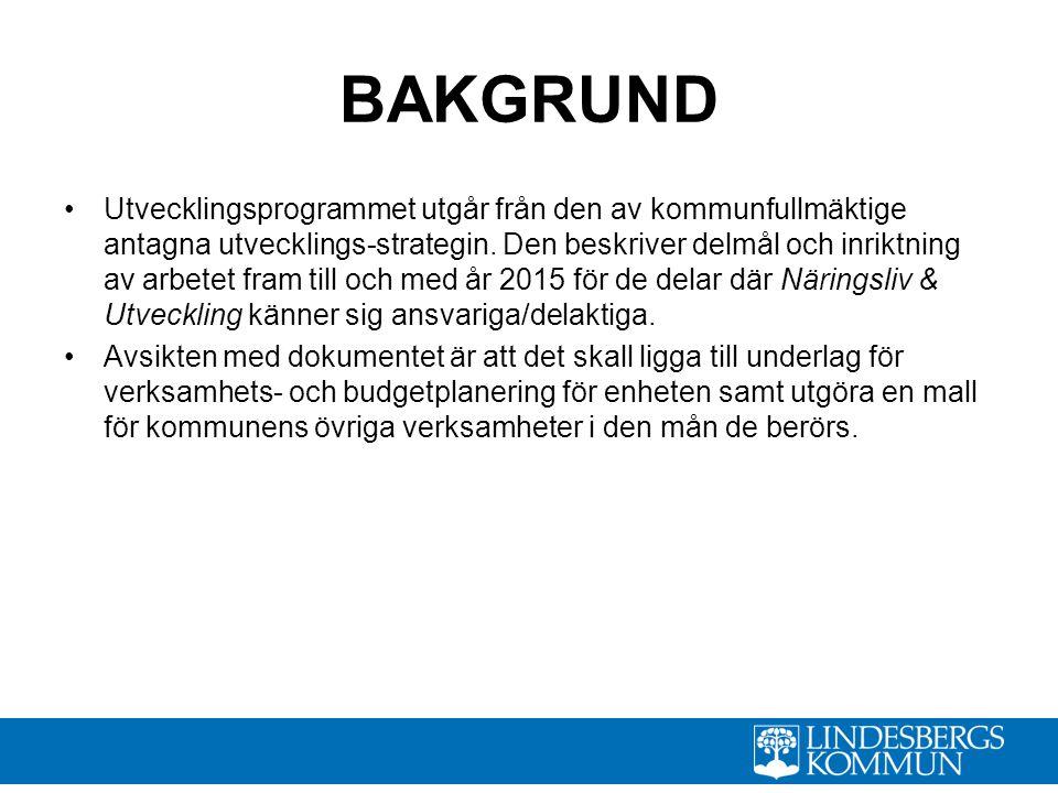 BAKGRUND Utvecklingsprogrammet utgår från den av kommunfullmäktige antagna utvecklings-strategin.