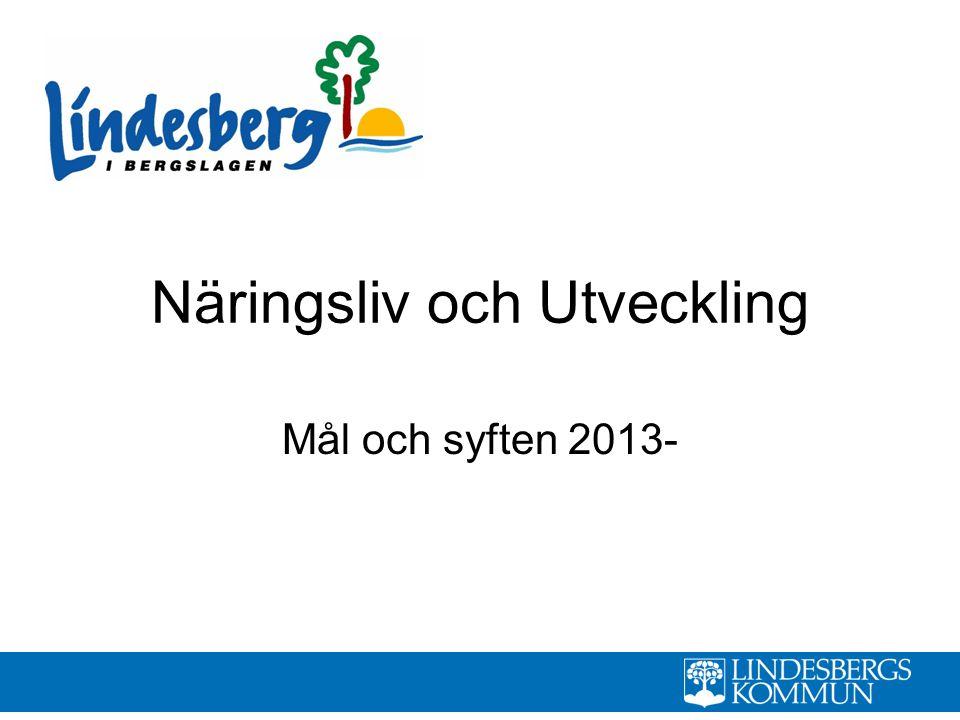 Näringsliv och Utveckling Mål och syften 2013-