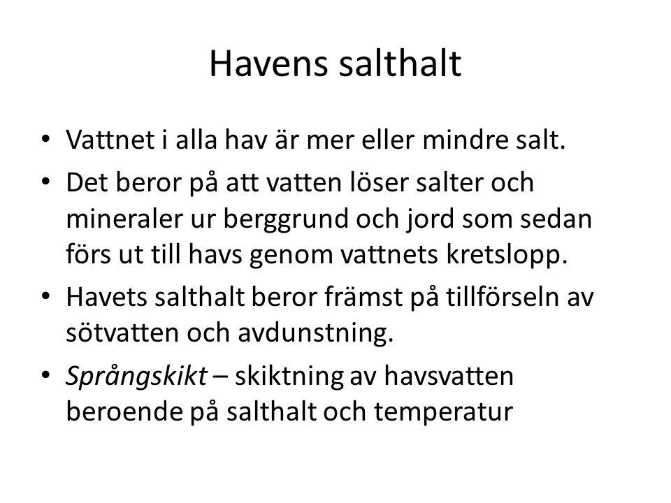 Havens salthalt Vattnet i alla hav är mer eller mindre salt. Det beror på att vatten löser salter och mineraler ur berggrund och jord som sedan förs u