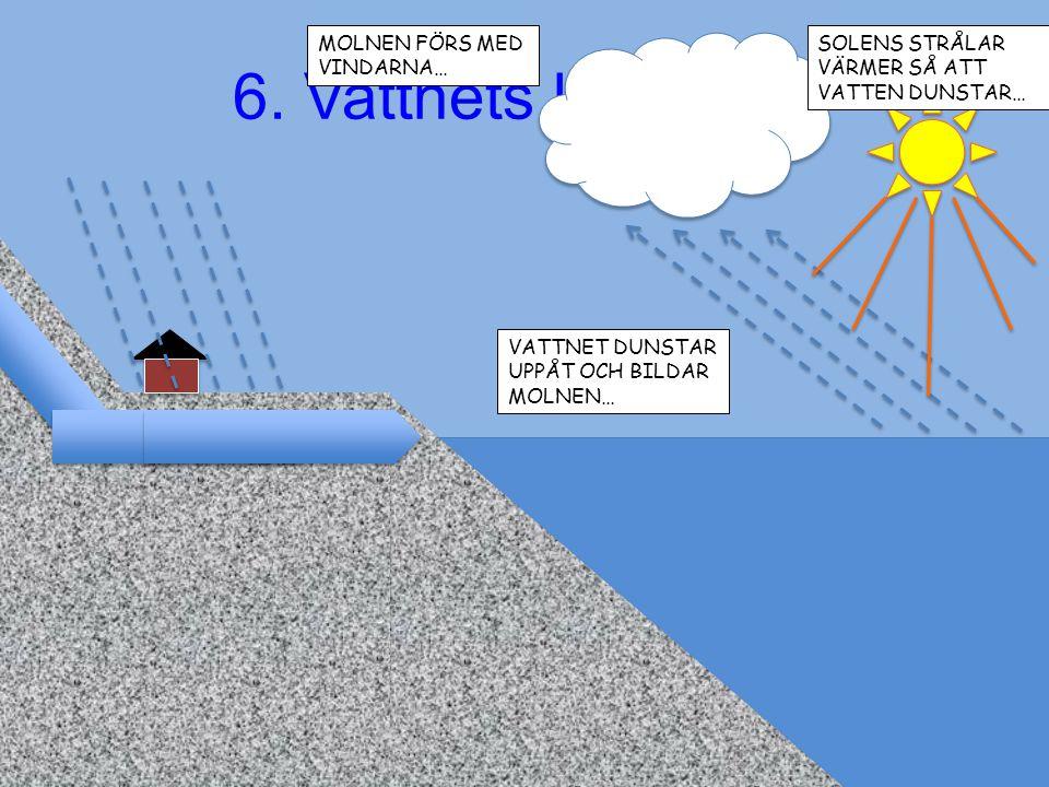 6. Vattnets kretslopp
