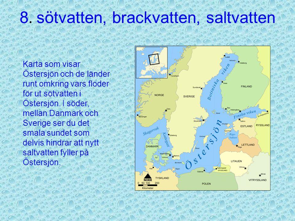 8. sötvatten, brackvatten, saltvatten Sötvatten = vattnet som är drickbart. Det finns i sjöar, åar, bäckar och grundvatten. Ungefär 3 % av allt vatten