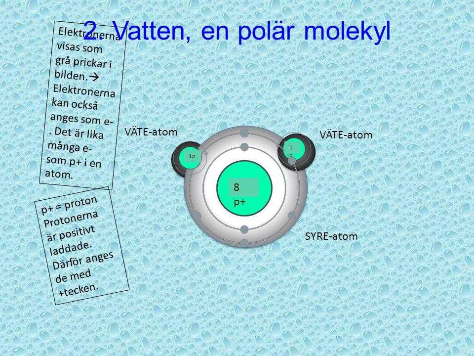 1. Vattenmolekylen VÄTE-atom SYRE-atom