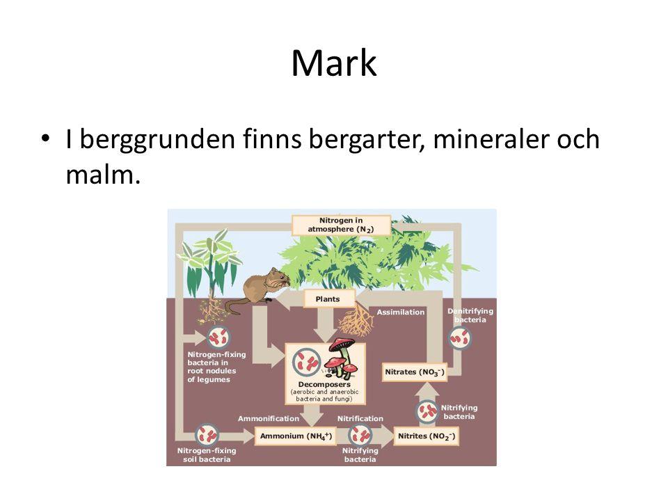 Mark I berggrunden finns bergarter, mineraler och malm.