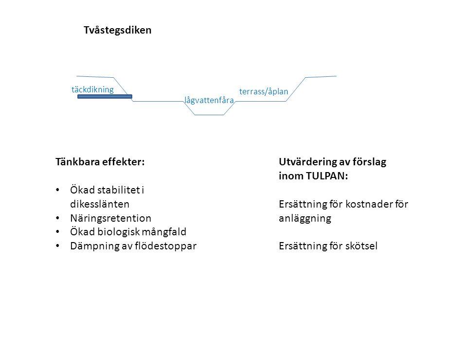 Tvåstegsdiken Tänkbara effekter: Ökad stabilitet i dikesslänten Näringsretention Ökad biologisk mångfald Dämpning av flödestoppar Utvärdering av försl