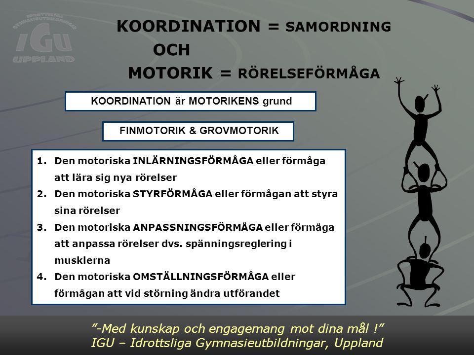 KOORDINATION = SAMORDNING OCH MOTORIK = RÖRELSEFÖRMÅGA -Med kunskap och engagemang mot dina mål ! IGU – Idrottsliga Gymnasieutbildningar, Uppland 1.Den motoriska INLÄRNINGSFÖRMÅGA eller förmåga att lära sig nya rörelser 2.Den motoriska STYRFÖRMÅGA eller förmågan att styra sina rörelser 3.Den motoriska ANPASSNINGSFÖRMÅGA eller förmåga att anpassa rörelser dvs.