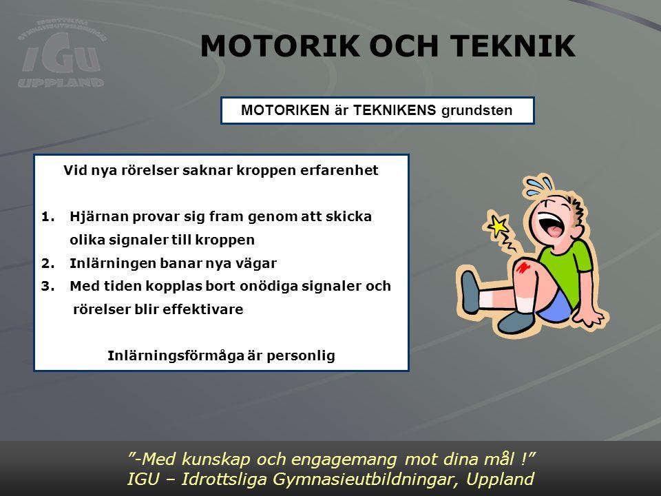 """MOTORIK OCH TEKNIK """"-Med kunskap och engagemang mot dina mål !"""" IGU – Idrottsliga Gymnasieutbildningar, Uppland Vid nya rörelser saknar kroppen erfare"""