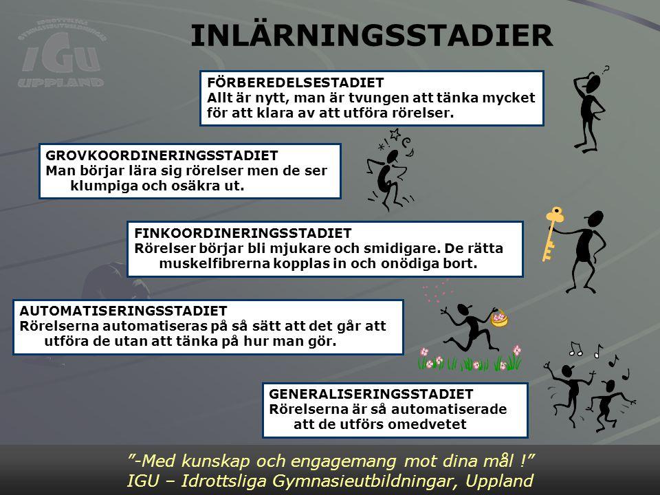"""INLÄRNINGSSTADIER """"-Med kunskap och engagemang mot dina mål !"""" IGU – Idrottsliga Gymnasieutbildningar, Uppland FÖRBEREDELSESTADIET Allt är nytt, man ä"""