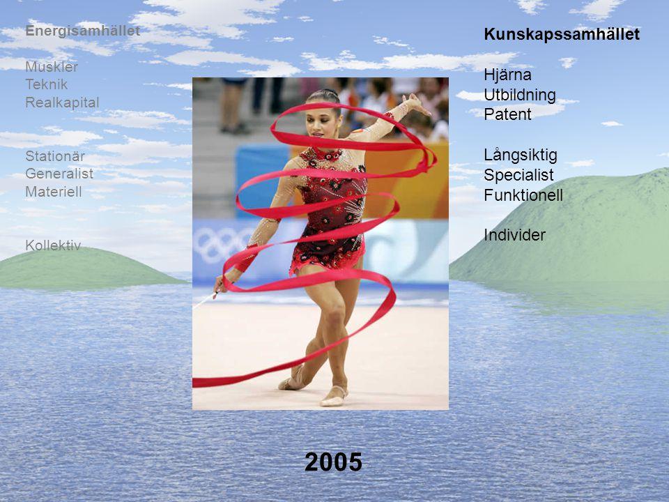2005 Kollektiv Stationär Generalist Materiell Muskler Teknik Realkapital Energisamhället Hjärna Utbildning Patent Långsiktig Specialist Funktionell In
