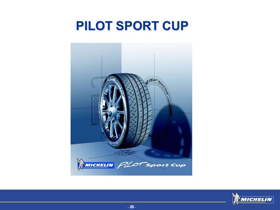 - 28 - EFV PILOT SPORT CUP