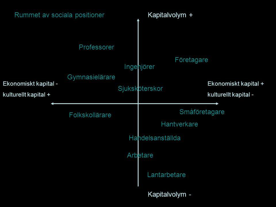 Kapitalvolym + Kapitalvolym - Ekonomiskt kapital + kulturellt kapital - Ekonomiskt kapital - kulturellt kapital + Rummet av sociala positioner Profess